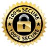 dumpsjournal ssl secure