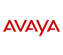 Avaya Dumps Exams